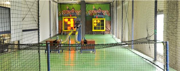goza-pitching
